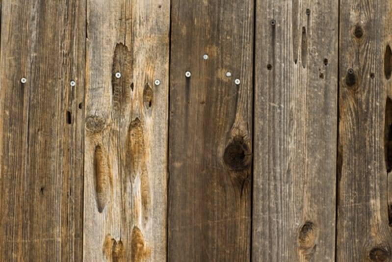 Splinters and protruding nails cause pallet contamination