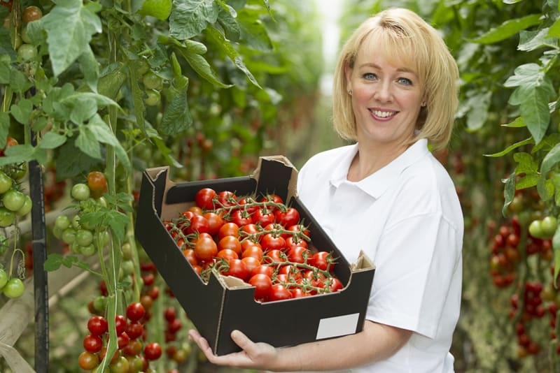 Vegetable growers are confident about the future.
